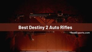 Best 15 Destiny 2 Auto Rifles